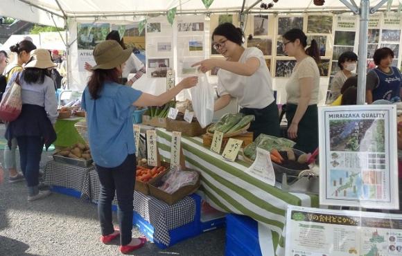 新鮮で色鮮やかな有機野菜は、特に女性客に人気だった